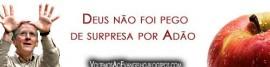 Artigo-060