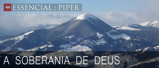 Essencial-Piper-2