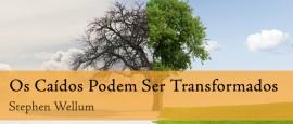 OsCaidosPodemSerTransformados2