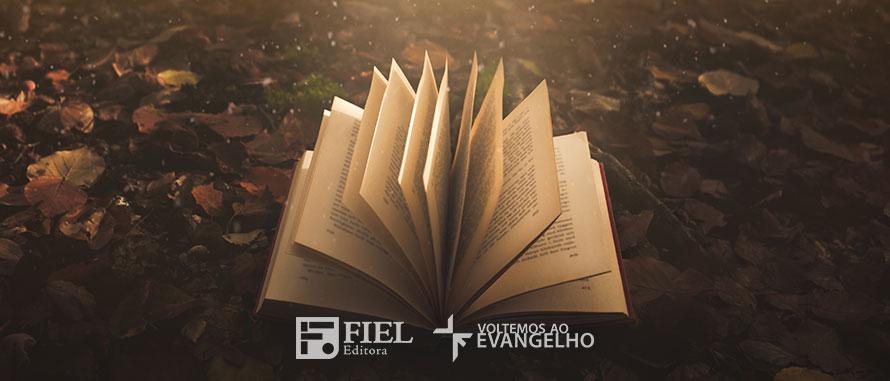 porque-precisamos-da-Biblia