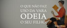 OQueNaoFazUsoDaVaraOdeiaSeuFilho