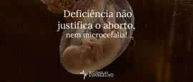 aborto-microcefalia-zika