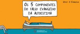 os-5-componentes-3