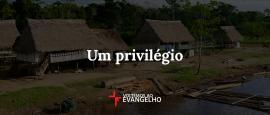 um-privilegio
