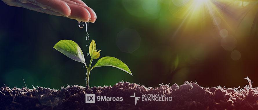 a-alternativa-porque-não-plantamos-igrejas