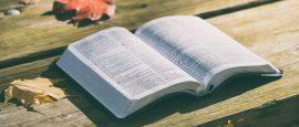 2-Salmos-sobre-as-relações-entre-Revelação-Geral-e-Revelação-Especial